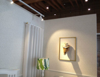 Brilumen apoia projeto de Ângela Pinheiro na INTERCASA