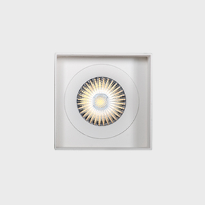 Eridane 8,6W Downlight