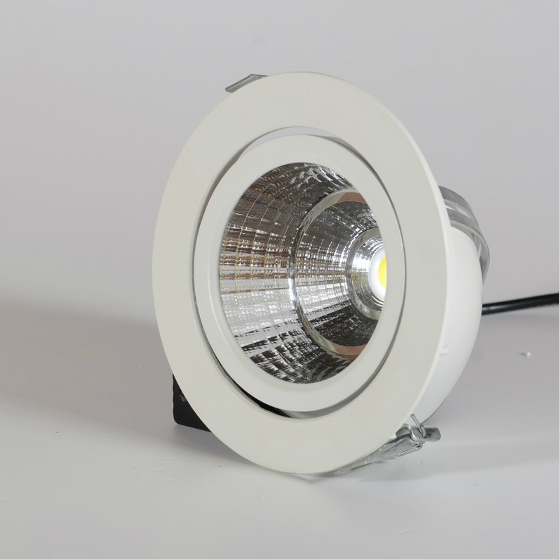 Horse Eye Downlight LED