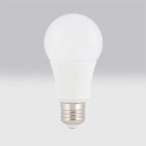 Lâmpada Globo Epistar LED