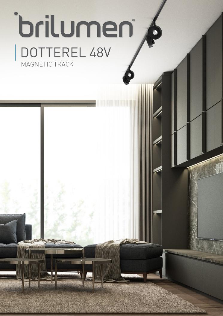 Flyer DOTTEREL 48V